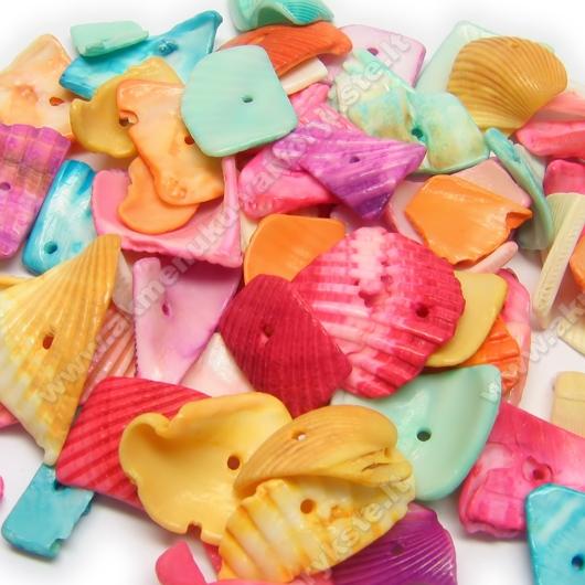 Natūralios kriauklės skalda, dažyta įvairiomis spalvomis - 30 vnt.