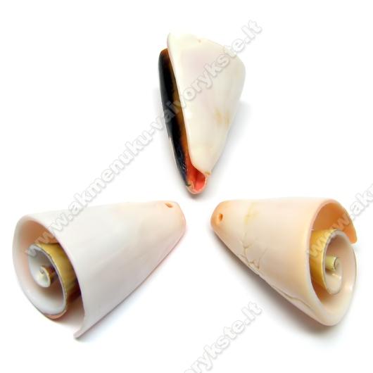 """Jūros kriauklės pakabukas - """"Spiralė"""" 35 mm"""