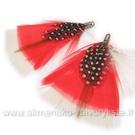 Plunksnų pakabukas pūkuotas raudonos spalvos 7 cm